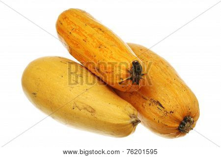 Three Ripe Zucchini