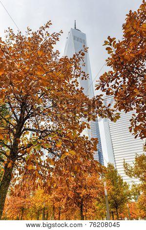 One World Trade Center In Autumn