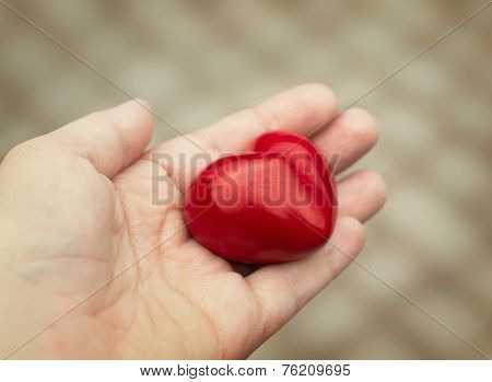 Young Woman Holds Out A Red Heart In Her Hand, Concept Of Love