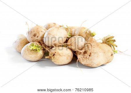 Turnips On White