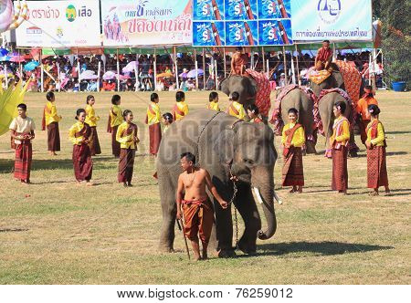 mahout and elephant prepare to start to show