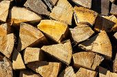 Yellow dry chopped conifer firewood logs background in a pile outdoor in sunlight poster