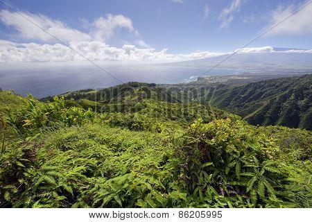 Waihee Ridge Trail, over looking Kahului and Haleakala, Maui, Hawaii