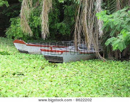 Lake & Boat View