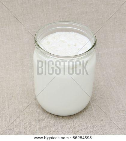 Tibetan milk Fungus In Jar With Milk.