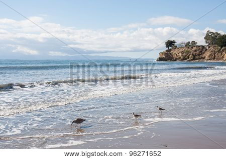 Santa Barbara Seascape