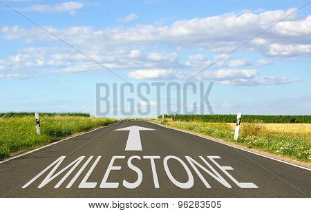 Milestone - Business Concept