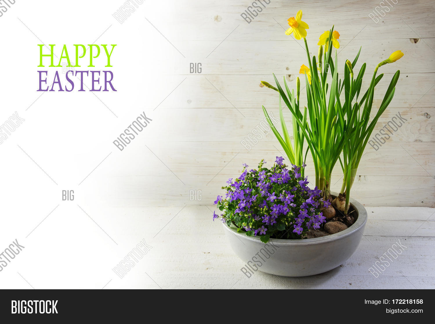 Potted Spring Flowers Image Photo Free Trial Bigstock