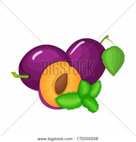 Vector composition of a few plums and mint leaves. Ripe plum fruits appetizing looking. Group of tasty ripe plum with pepper mint leaf packaging design of juice, breakfast, healthy vegan food.