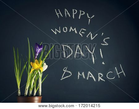 8 March Happy Womens day with spring flowers and an inscription in chalk on a dark blue background.