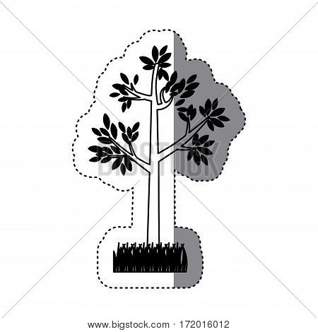 sticker contour silhouette tree leafy with bush vector illustration