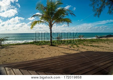Coconut Tree And Beautiful Sky On The Beach Thailand