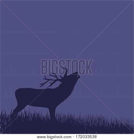 Illustration of deer standing on a hill at night