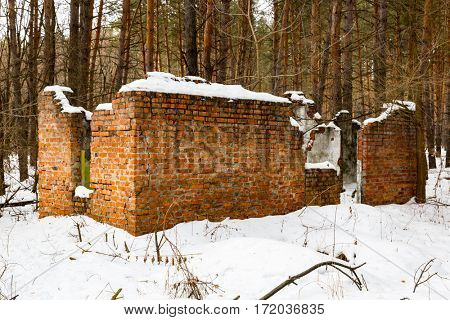 broken house in pine forest in winter