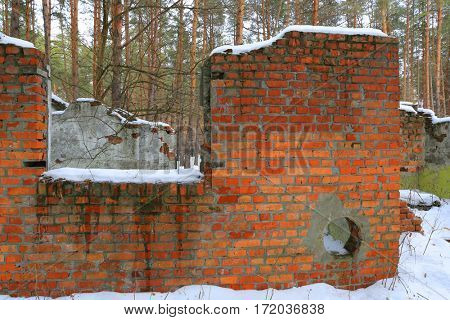 old red brickwork ruin in winter forest