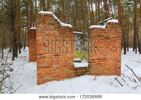 Old ruin of house in winter forest