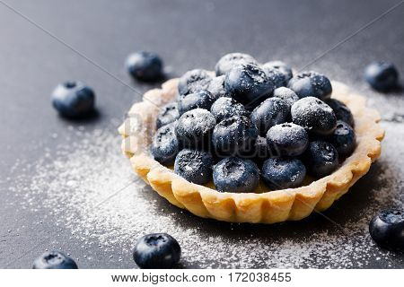 Blueberry tartlet pie tart with vanilla custard. Slate stone background. Copy space