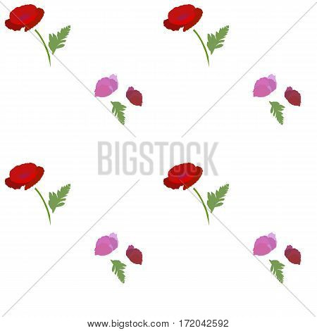 seamless floral pattern with poppies on white background. vector illustration.