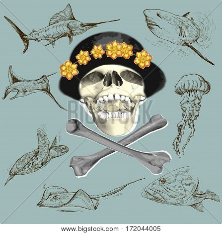 Pirate skull and underwater life - an hand drawn vector. Freehand sketching.