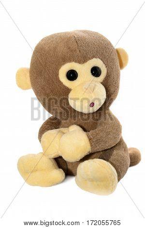 Soft toy. Monkey soft toy isolated on white background