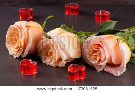 three beige rose with candles in the shape of heart on a dark wooden background.