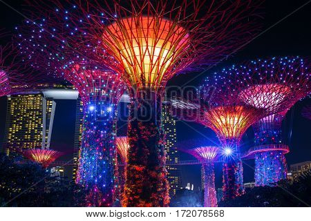 Singapore - June 26, 2016: Night view of illuminated Supertree Grove at Gardens by the Bay in Singapore