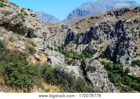 Palm forest among rocks in Preveli, Crete island, Greece