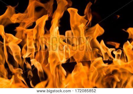 A close-up of intense orange flames in a fire