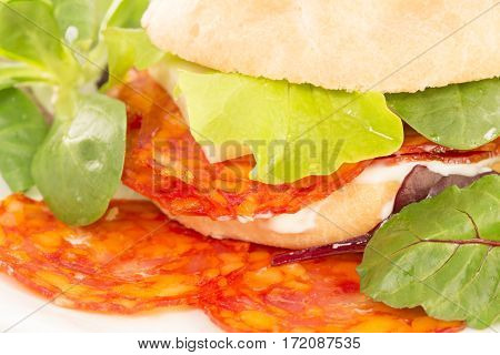 Pepperoni sandwich with the fresh salad close up