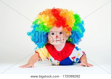 Child clown with a red nose and multicolored wig on a white background.