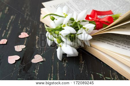 Snowdrops Bouquet On Open Book With Hearts