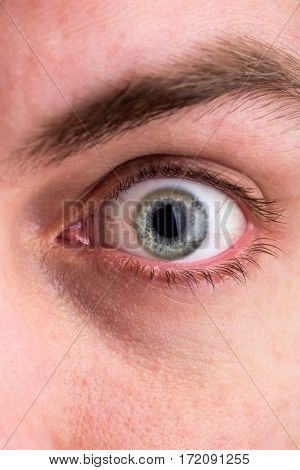 Human eye closeup, macro image of face