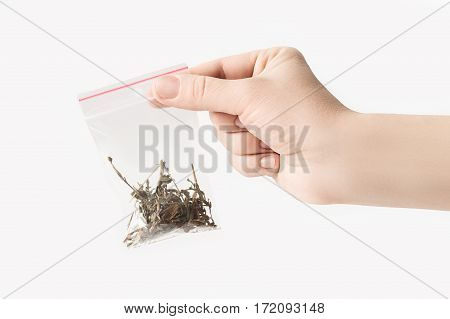 Hand holding Plastic transparent zipper bag with half blooming Sally tea isolated on white, Vacuum package mockup with red clip. Concept