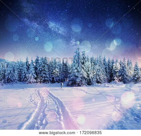 starry sky in winter snowy night. fantastic milky way in the New Year's Eve. The Milky Way is a fantastic New Year's Eve. Bokeh light effect, soft filter. Photo greeting card