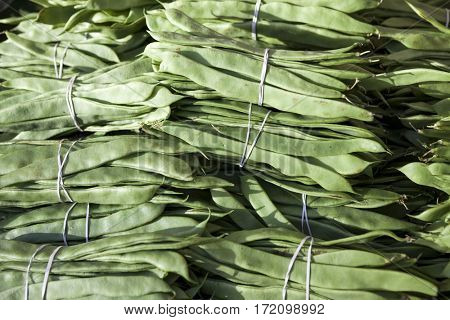 Bundles of fresh green beans . Green beans, Hanging haricot bean, Phaseolus vulgaris pods alone. Cluster beans.