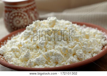 Homemade cottage cheese in the rustic bowl