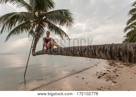 Cute blonde woman sitting on horizontal palm tree at tropical beach.