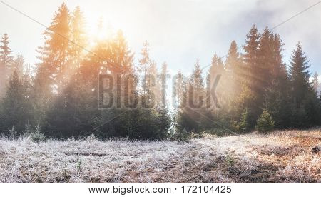 Fantastic sunlight in the morning. Fantastic fog in the mountains. October early winter days. Carpathian. Ukraine Europe