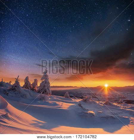 starry sky in winter snowy night. fantastic milky way in the New Year's Eve. In anticipation of the holiday. Dramatic scene. Carpathian. Ukraine.