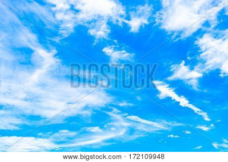 White cloudy and light blue sky background.