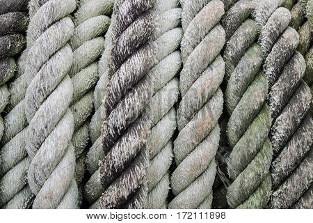 Rough rope for towing large boats full of green lichen stains.