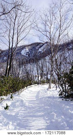 Snow And Walkway In The Forest Noboribetsu Onsen Snow Winter