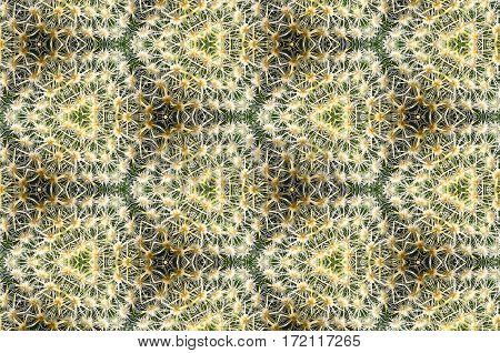 Green And White Cactus Abstract Pattern