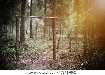 Forest sports, horizontal bars, parallel bars, a healthy lifestyle, Workout