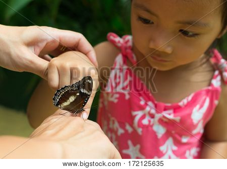 beuatiful little butterfly walking on kid's hand