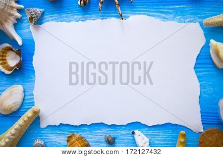 Summer Time Sea Vacation With White Blank With Copy Space, Star Fish And Marine Shell