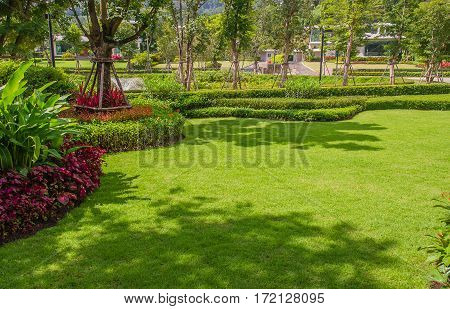 Landscaped Formal Garden,front yard with garden design,Peaceful Garden with tree shade  .
