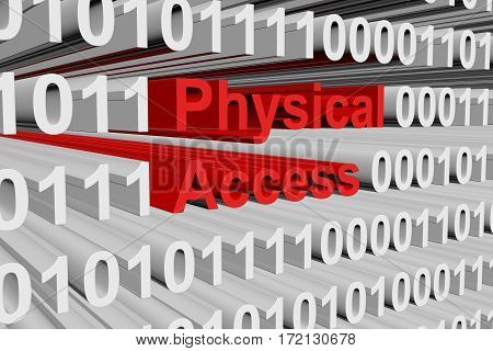 physical access in the form of binary code, 3D illustration