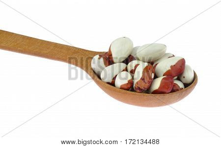 Pinto white pointed beans in wooden spoon isolated on white background