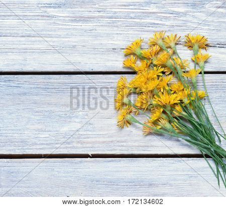 bouquet of dandelions on the boards.simple rustic background.toned.view from above